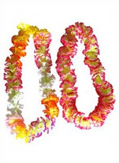 Hawaii Leis